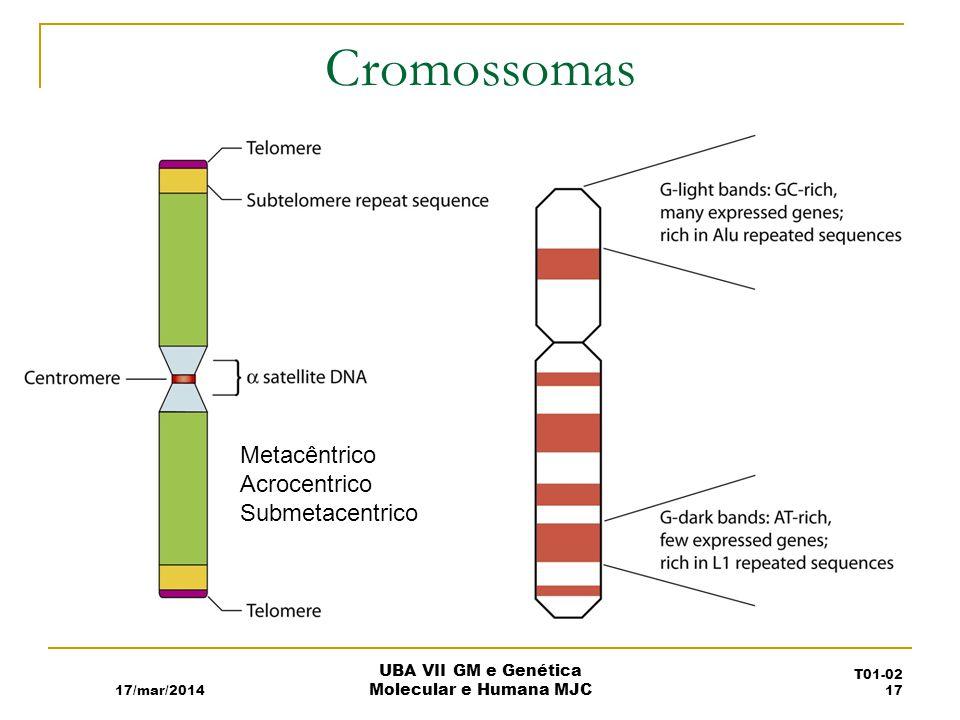 Cromossomas Metacêntrico Acrocentrico Submetacentrico 17/mar/2014 UBA VII GM e Genética Molecular e Humana MJC T01-02 17