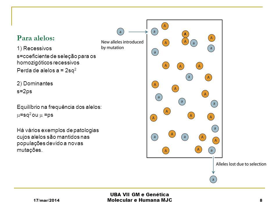 Para alelos: 1) Recessivos s=coeficiente de seleção para os homozigóticos recessivos Perda de alelos a = 2sq 2 2) Dominantes s=2ps Equilíbrio na frequência dos alelos: =sq 2 ou =ps Há vários exemplos de patologias cujos alelos são mantidos nas populações devido a novas mutações.