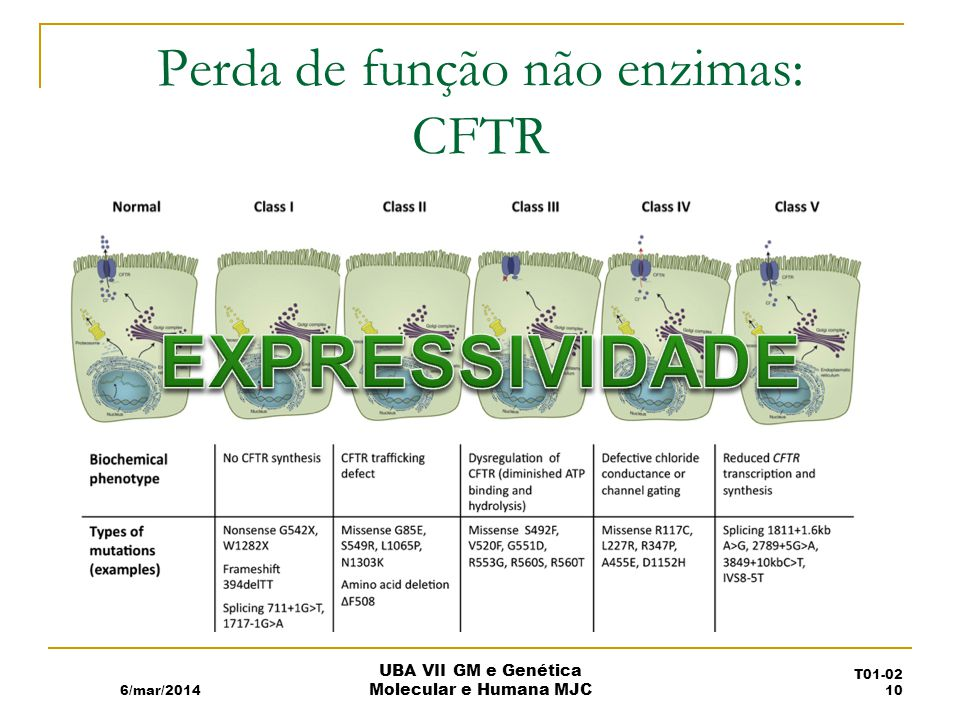 Perda de função não enzimas: CFTR 6/mar/2014 UBA VII GM e Genética Molecular e Humana MJC T01-02 10