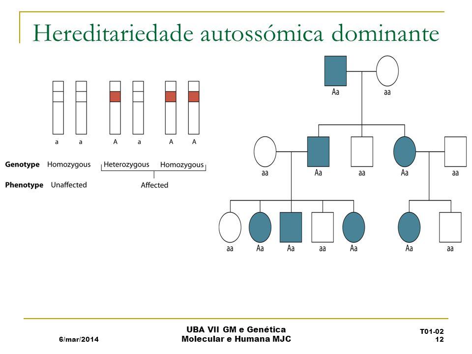 Hereditariedade autossómica dominante 6/mar/2014 UBA VII GM e Genética Molecular e Humana MJC T01-02 12