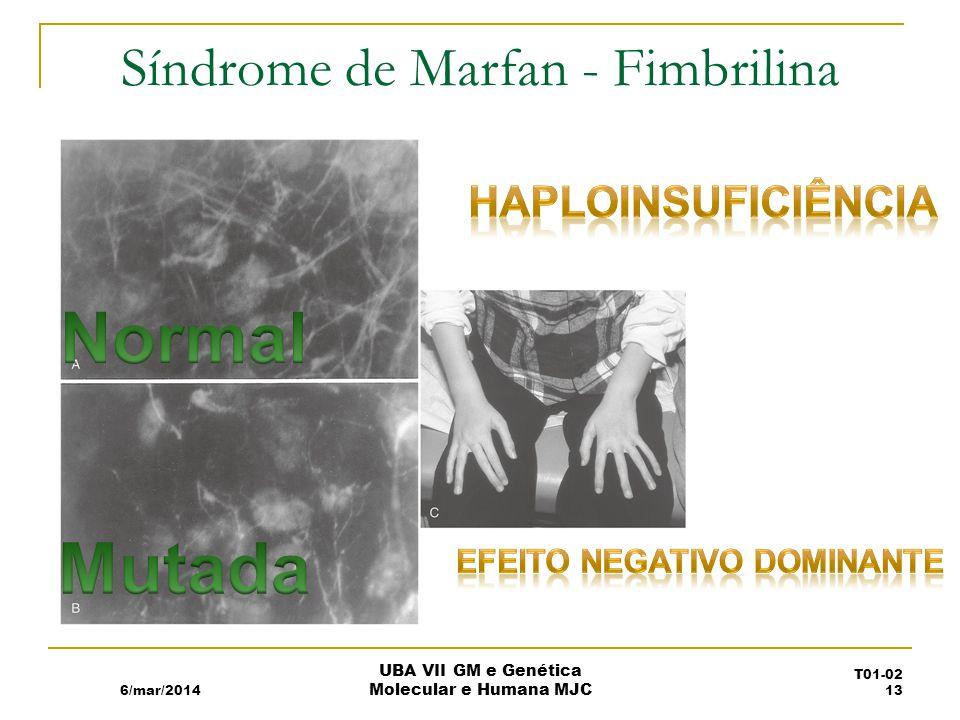 Síndrome de Marfan - Fimbrilina 6/mar/2014 UBA VII GM e Genética Molecular e Humana MJC T01-02 13