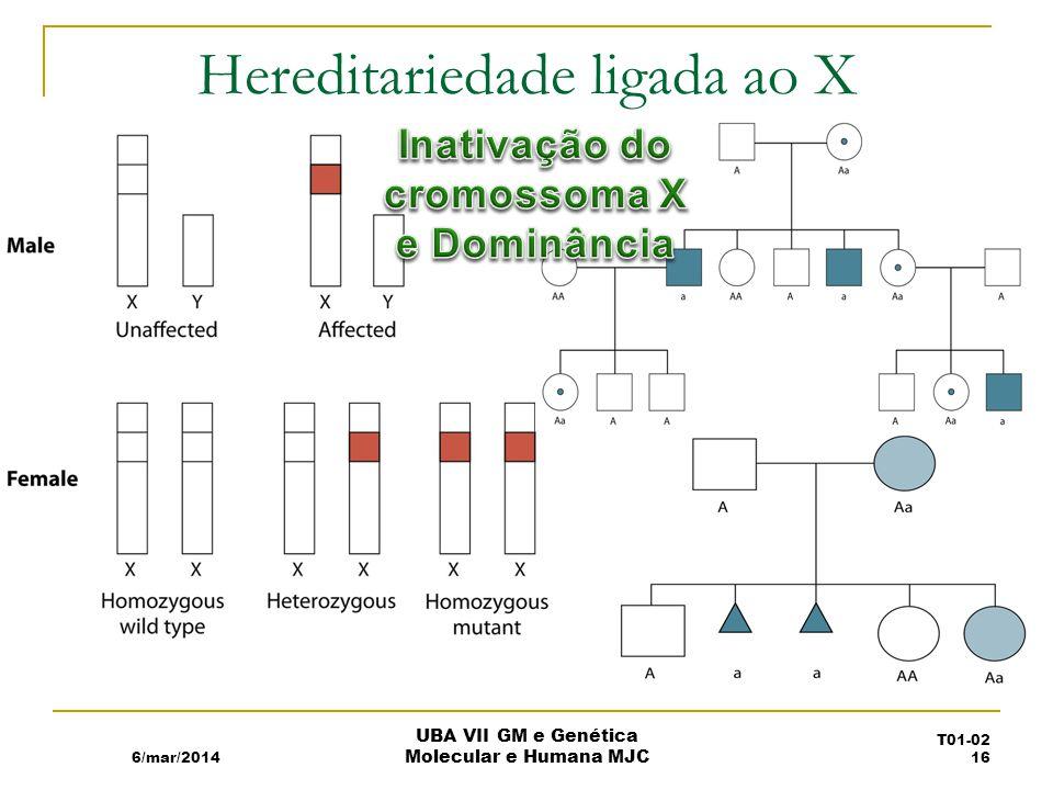 Hereditariedade ligada ao X 6/mar/2014 UBA VII GM e Genética Molecular e Humana MJC T01-02 16