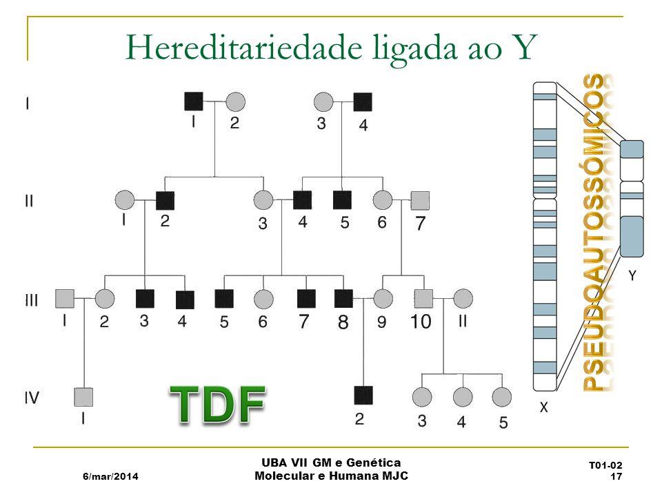 Hereditariedade ligada ao Y 6/mar/2014 UBA VII GM e Genética Molecular e Humana MJC T01-02 17
