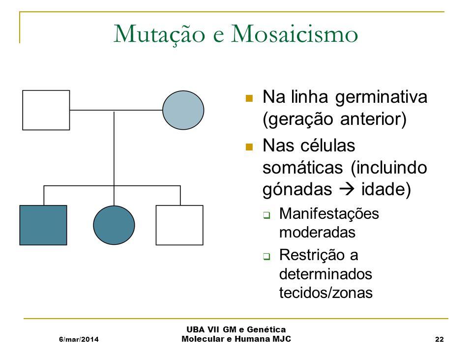 Mutação e Mosaicismo Na linha germinativa (geração anterior) Nas células somáticas (incluindo gónadas idade) Manifestações moderadas Restrição a determinados tecidos/zonas 6/mar/2014 UBA VII GM e Genética Molecular e Humana MJC 22