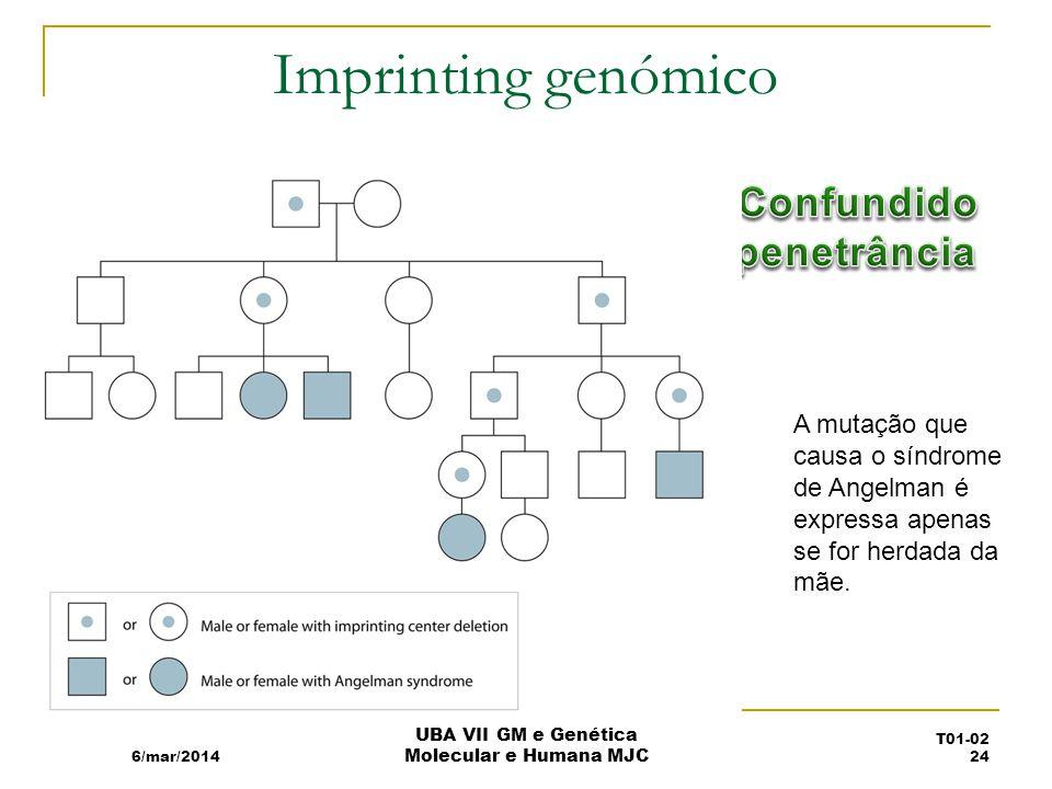Imprinting genómico A mutação que causa o síndrome de Angelman é expressa apenas se for herdada da mãe.