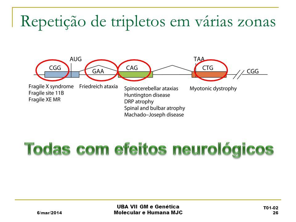Repetição de tripletos em várias zonas 6/mar/2014 UBA VII GM e Genética Molecular e Humana MJC T01-02 26