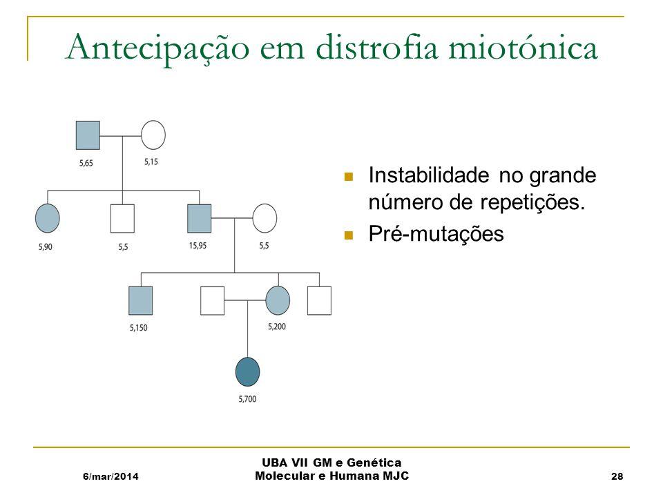 Antecipação em distrofia miotónica Instabilidade no grande número de repetições.