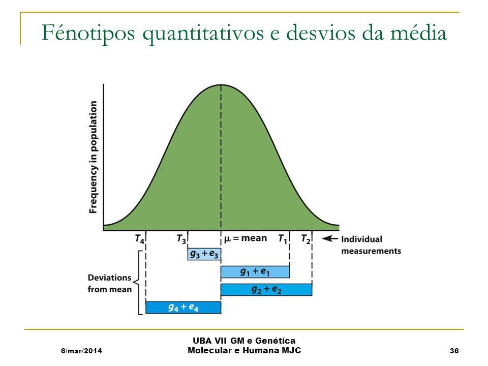 Fénotipos quantitativos e desvios da média 6/mar/2014 UBA VII GM e Genética Molecular e Humana MJC 36