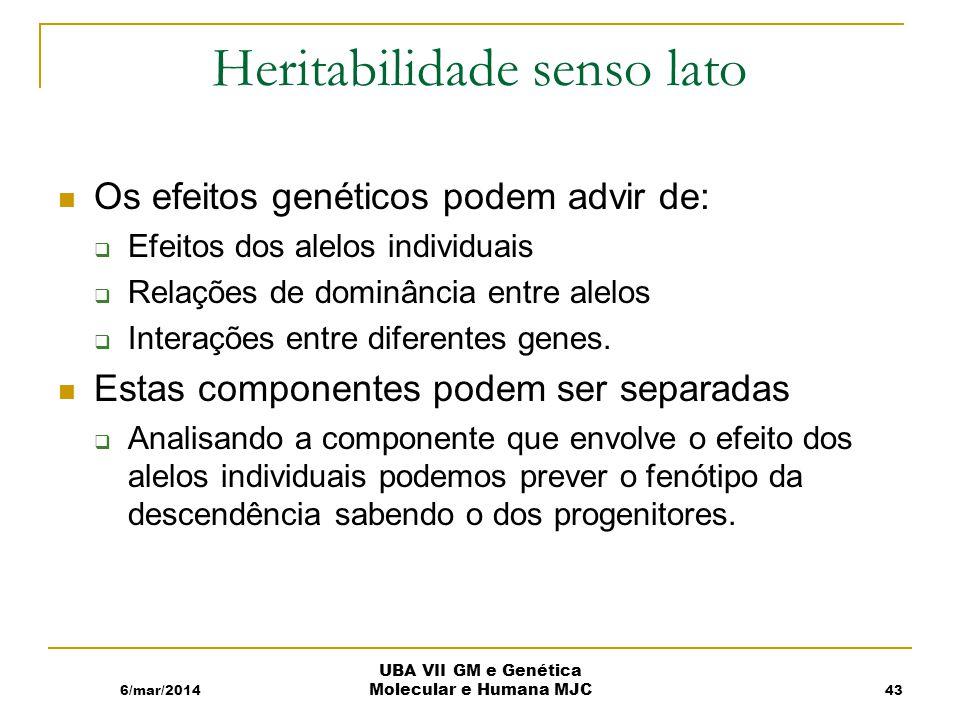 Heritabilidade senso lato Os efeitos genéticos podem advir de: Efeitos dos alelos individuais Relações de dominância entre alelos Interações entre diferentes genes.