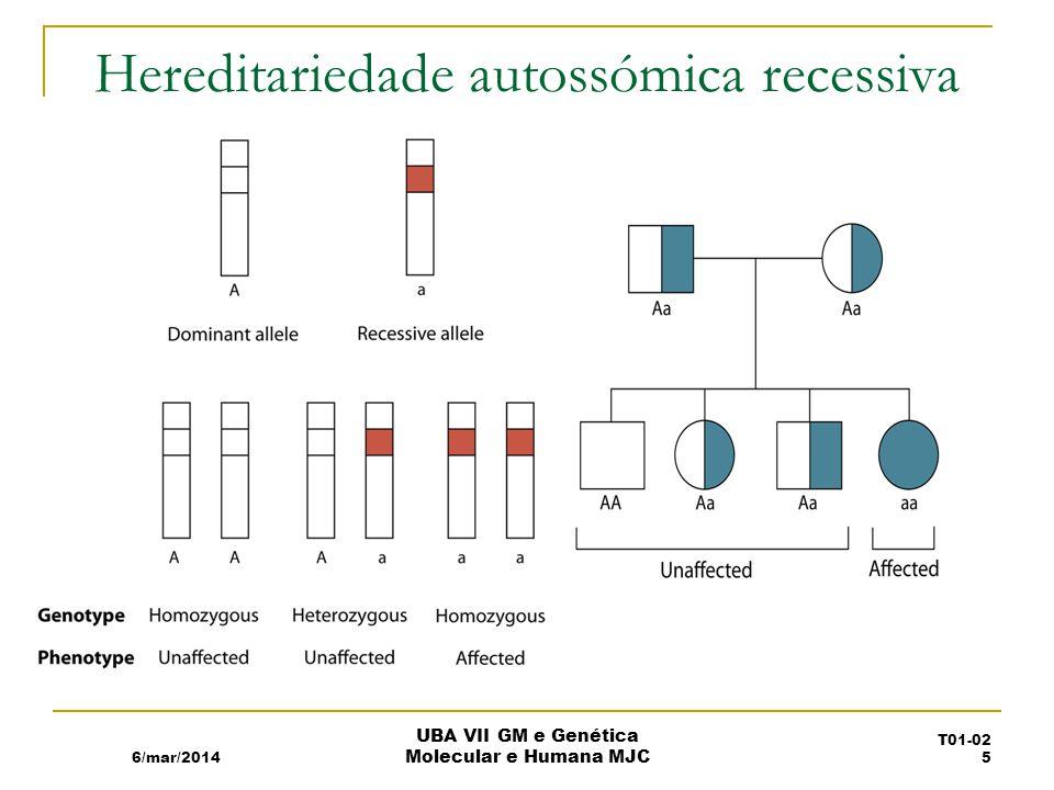 Hereditariedade autossómica recessiva 6/mar/2014 UBA VII GM e Genética Molecular e Humana MJC T01-02 5