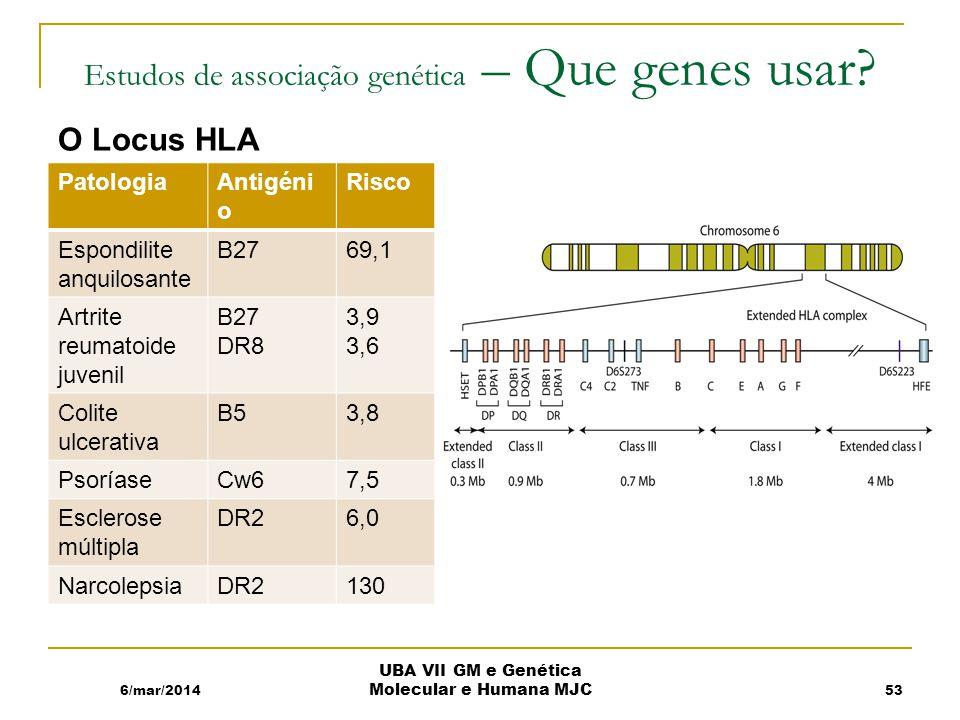 Estudos de associação genética – Que genes usar.