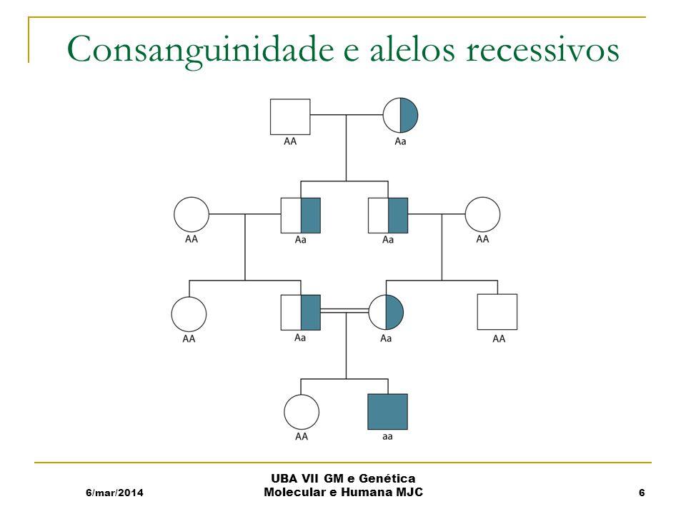 Consanguinidade e alelos recessivos 6/mar/2014 UBA VII GM e Genética Molecular e Humana MJC 6