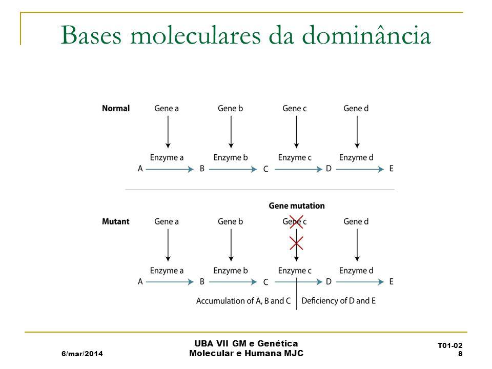 Bases moleculares da dominância 6/mar/2014 UBA VII GM e Genética Molecular e Humana MJC T01-02 8