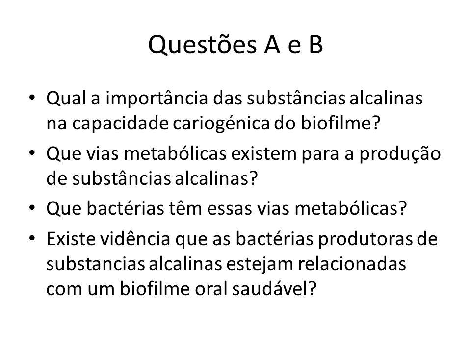Questões A e B Qual a importância das substâncias alcalinas na capacidade cariogénica do biofilme? Que vias metabólicas existem para a produção de sub