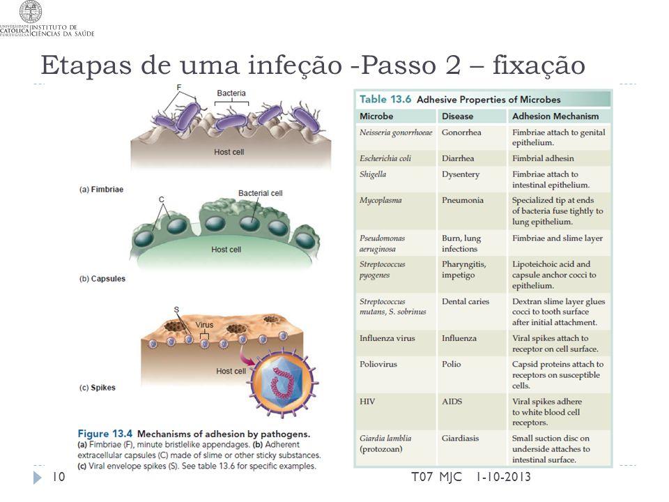 Etapas de uma infeção -Passo 2 – fixação 1-10-2013T07 MJC10