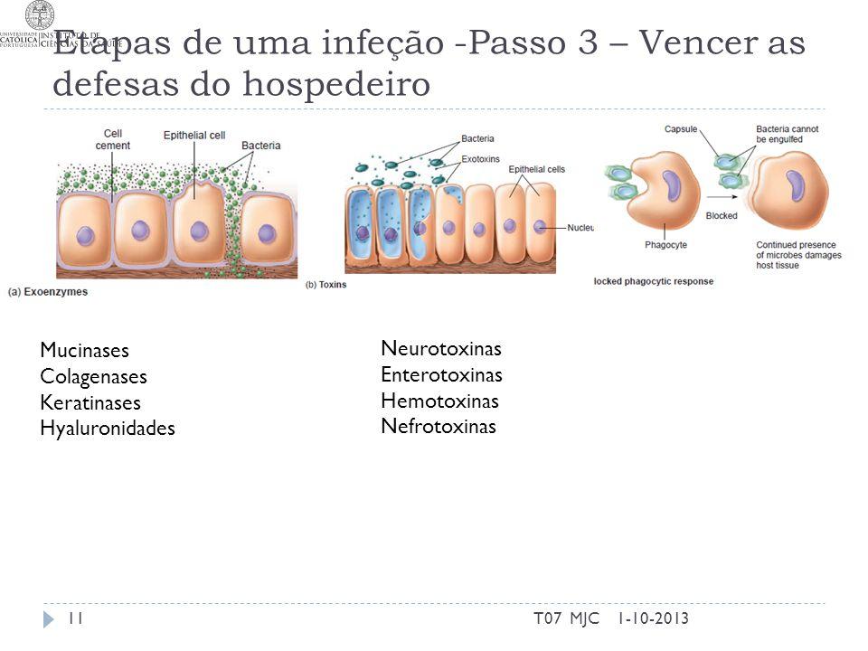 Etapas de uma infeção -Passo 3 – Vencer as defesas do hospedeiro 1-10-2013T07 MJC11 Mucinases Colagenases Keratinases Hyaluronidades Neurotoxinas Ente