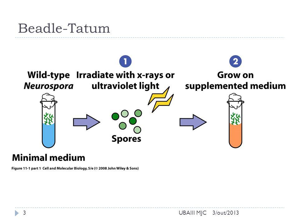 Beadle-Tatum 3/out/2013UBAIII MJC3