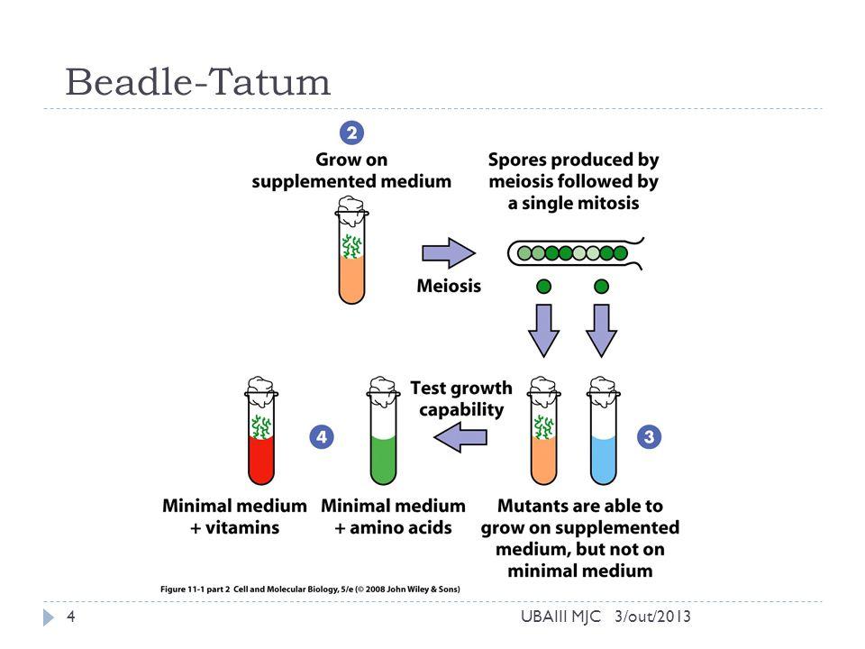 Um gene uma enzima 3/out/2013UBAIII MJC5