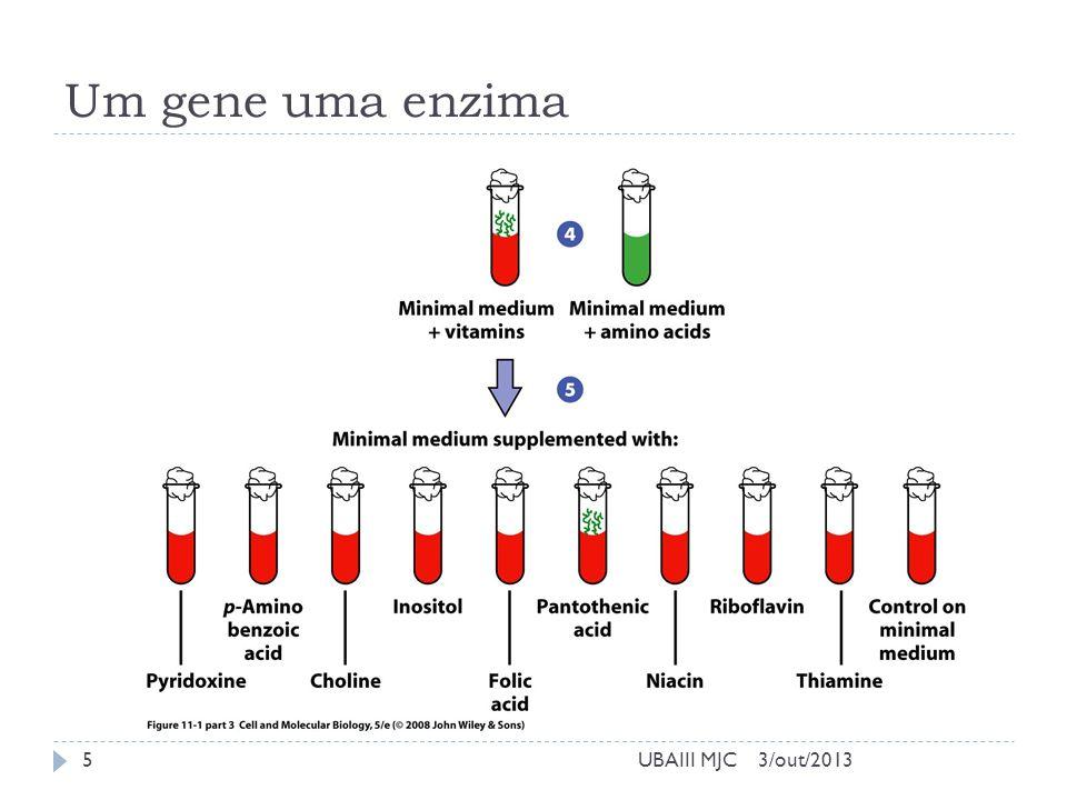 3/out/2013UBAIII MJC Informação Genética na Célula Fluxo da Informação Biológica 6