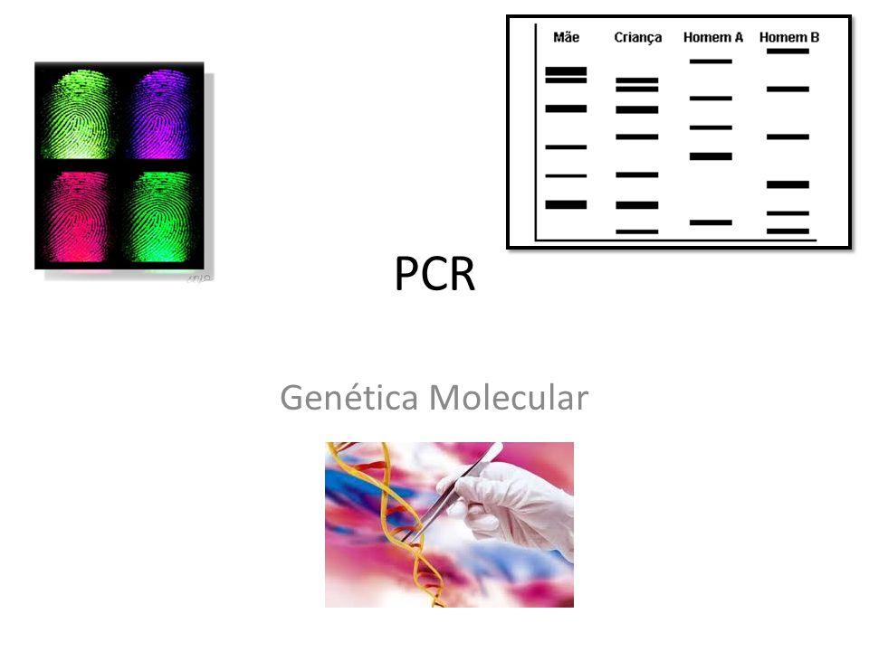 Polymerase chain reaction Técnica extremamente eficaz para amplificação de genes; Kary Mullis – prémio Nobel da química 1993 Amplificação feita in vitro ; Identificação do perfil genético; A sequência pode ser amplificada milhões de vezes em poucas horas;