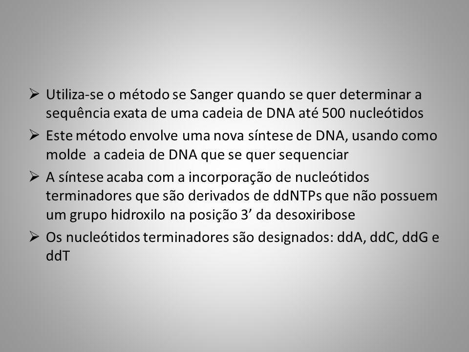 Utiliza-se o método se Sanger quando se quer determinar a sequência exata de uma cadeia de DNA até 500 nucleótidos Este método envolve uma nova síntes