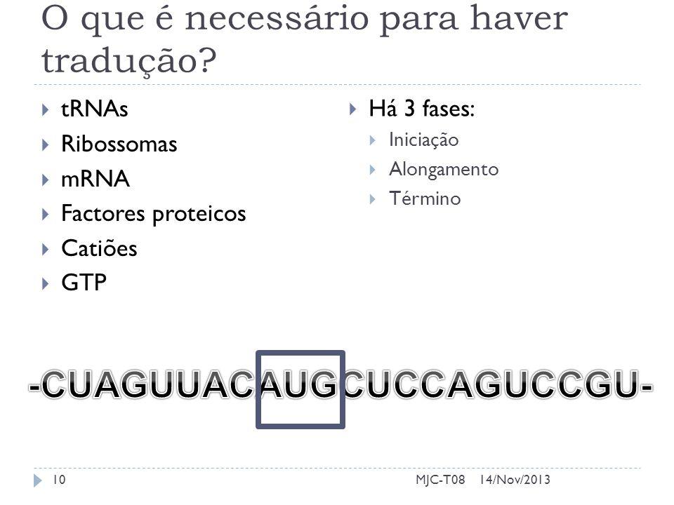 O que é necessário para haver tradução? tRNAs Ribossomas mRNA Factores proteicos Catiões GTP Há 3 fases: Iniciação Alongamento Término 14/Nov/201310MJ