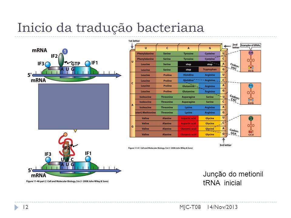 i Inicio da tradução bacteriana Junção do metionil tRNA inicial 14/Nov/201312MJC-T08