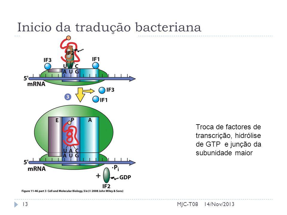 Inicio da tradução bacteriana Troca de factores de transcrição, hidrólise de GTP e junção da subunidade maior 14/Nov/201313MJC-T08