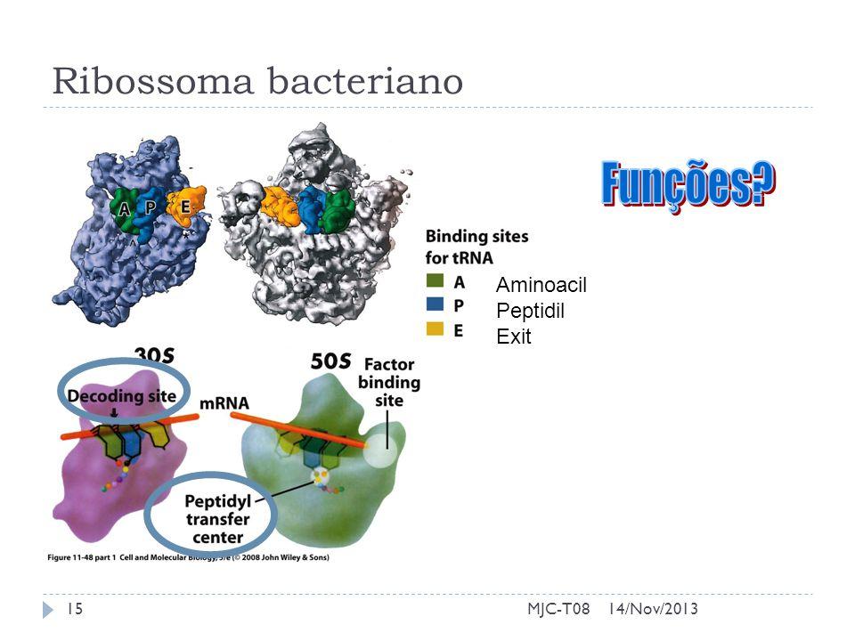 Ribossoma bacteriano Aminoacil Peptidil Exit 14/Nov/201315MJC-T08