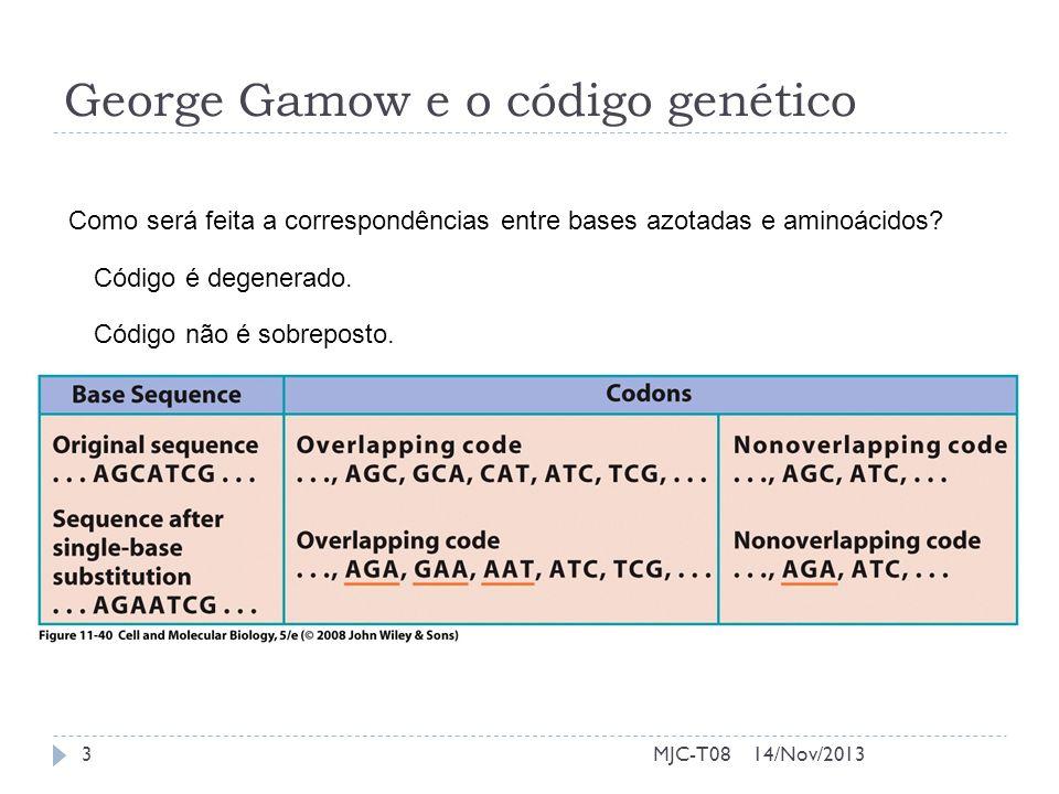 George Gamow e o código genético 14/Nov/20133MJC-T08 Como será feita a correspondências entre bases azotadas e aminoácidos? Código é degenerado. Códig
