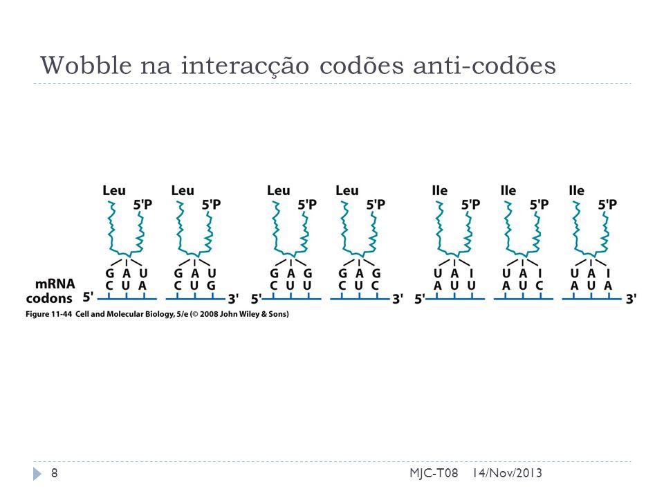 Wobble na interacção codões anti-codões 14/Nov/20138MJC-T08