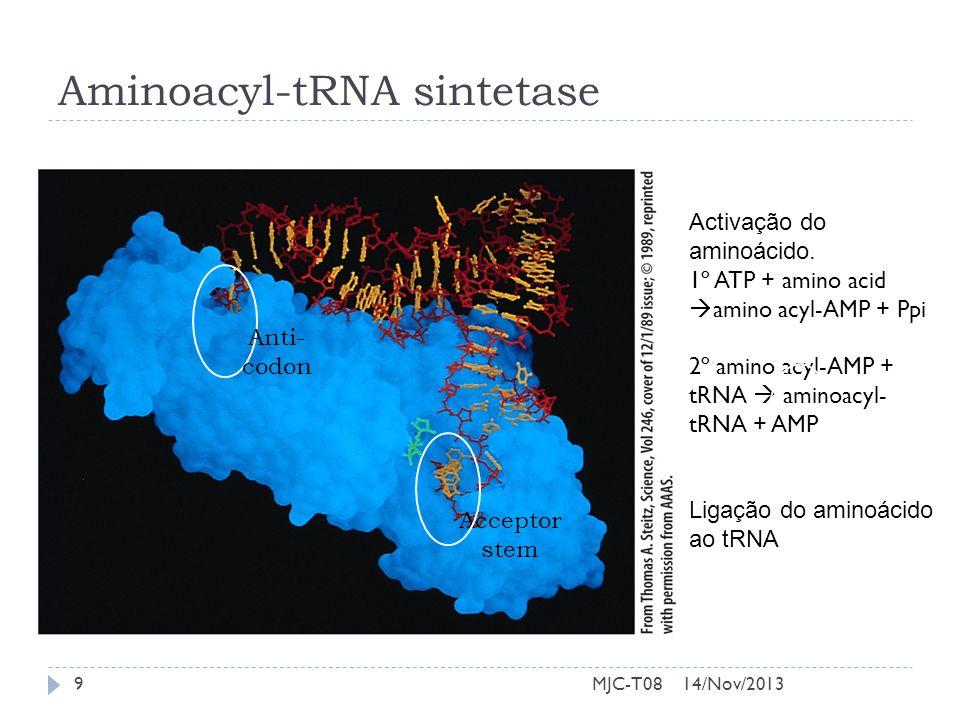 Aminoacyl-tRNA sintetase Activação do aminoácido. 1º ATP + amino acid amino acyl-AMP + Ppi 2º amino acyl-AMP + tRNA aminoacyl- tRNA + AMP Ligação do a