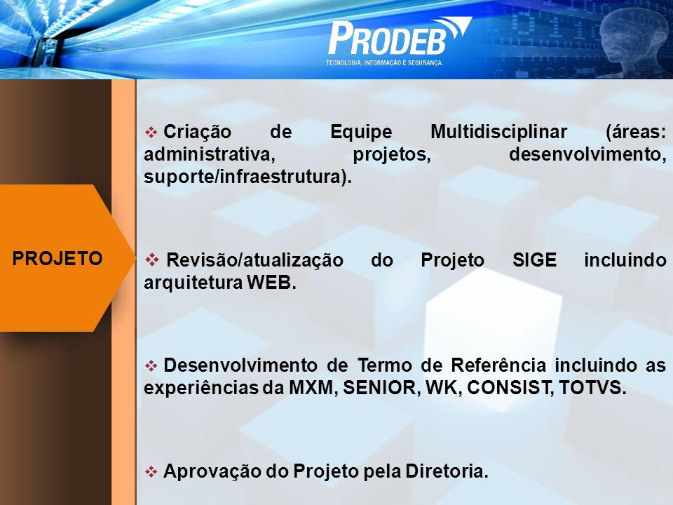 Criação de Equipe Multidisciplinar (áreas: administrativa, projetos, desenvolvimento, suporte/infraestrutura). Revisão/atualização do Projeto SIGE inc