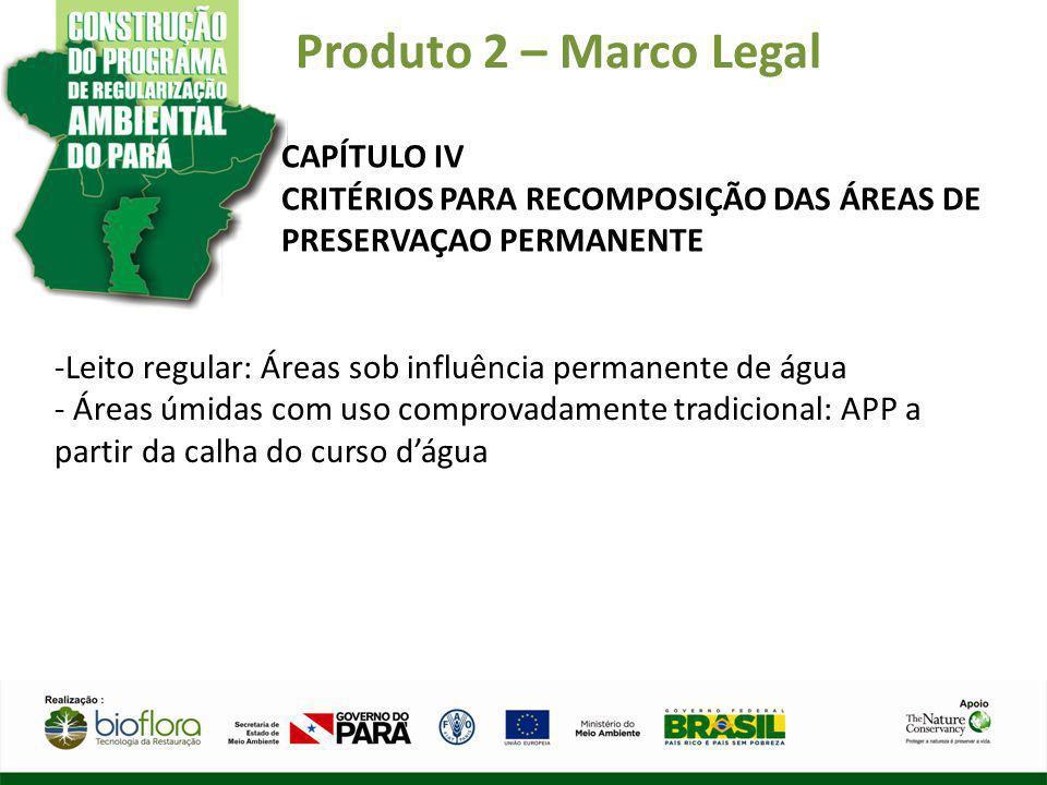 Produto 2 – Marco Legal CAPÍTULO IV CRITÉRIOS PARA RECOMPOSIÇÃO DAS ÁREAS DE PRESERVAÇAO PERMANENTE -Leito regular: Áreas sob influência permanente de