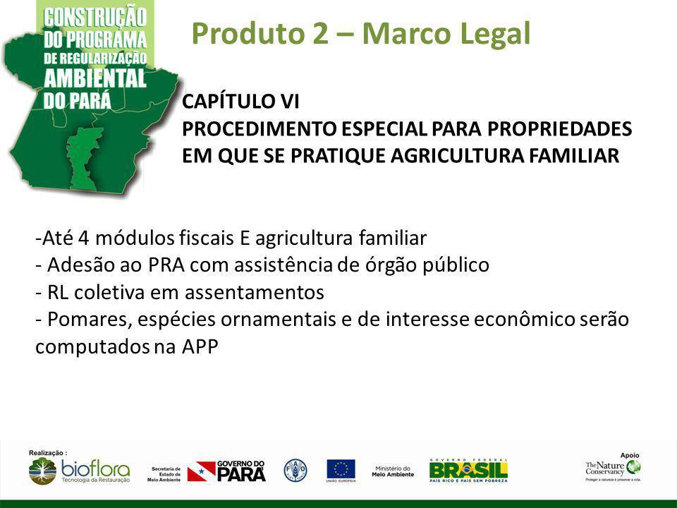 Produto 2 – Marco Legal CAPÍTULO VI PROCEDIMENTO ESPECIAL PARA PROPRIEDADES EM QUE SE PRATIQUE AGRICULTURA FAMILIAR -Até 4 módulos fiscais E agricultu