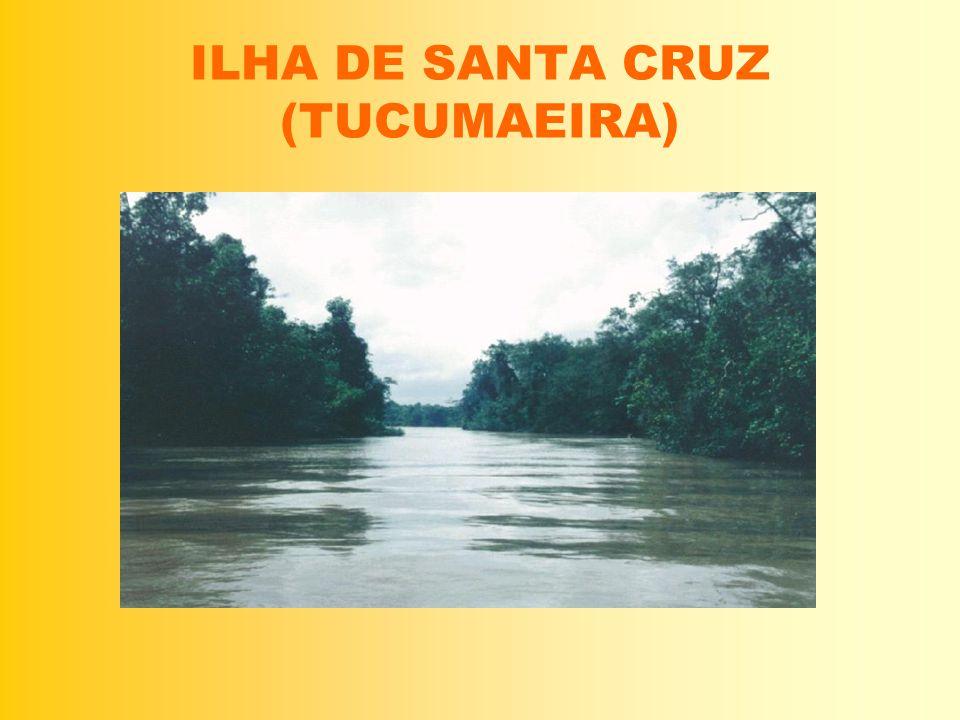 ILHA DE SANTA CRUZ (TUCUMAEIRA)