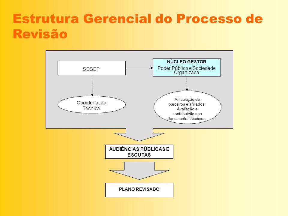 Estrutura Gerencial do Processo de Revisão SEGEP NÚCLEO GESTOR Poder Público e Sociedade Organizada Coordenação Técnica Articulação de parceiros e afi