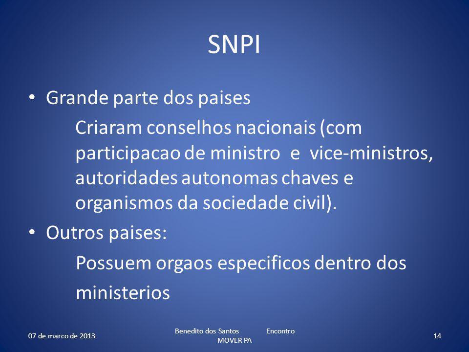 SNPI Grande parte dos paises Criaram conselhos nacionais (com participacao de ministro e vice-ministros, autoridades autonomas chaves e organismos da sociedade civil).