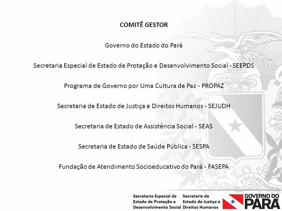 Nome da Secretaria Especial.... Nome do Órgão ou Entidade vinculada COMITÊ GESTOR Governo do Estado do Pará Secretaria Especial de Estado de Proteção