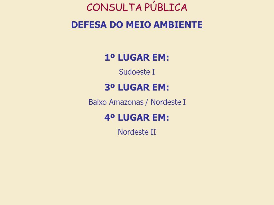 CONSULTA PÚBLICA DEFESA DO MEIO AMBIENTE 1º LUGAR EM: Sudoeste I 3º LUGAR EM: Baixo Amazonas / Nordeste I 4º LUGAR EM: Nordeste II