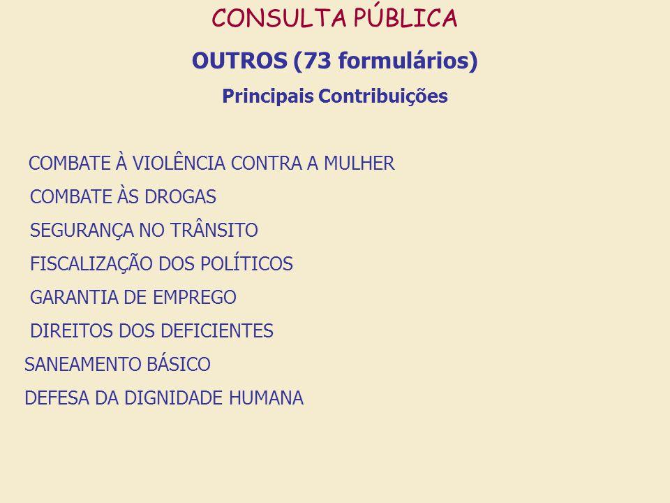 CONSULTA PÚBLICA OUTROS (73 formulários) Principais Contribuições COMBATE À VIOLÊNCIA CONTRA A MULHER COMBATE ÀS DROGAS SEGURANÇA NO TRÂNSITO FISCALIZ