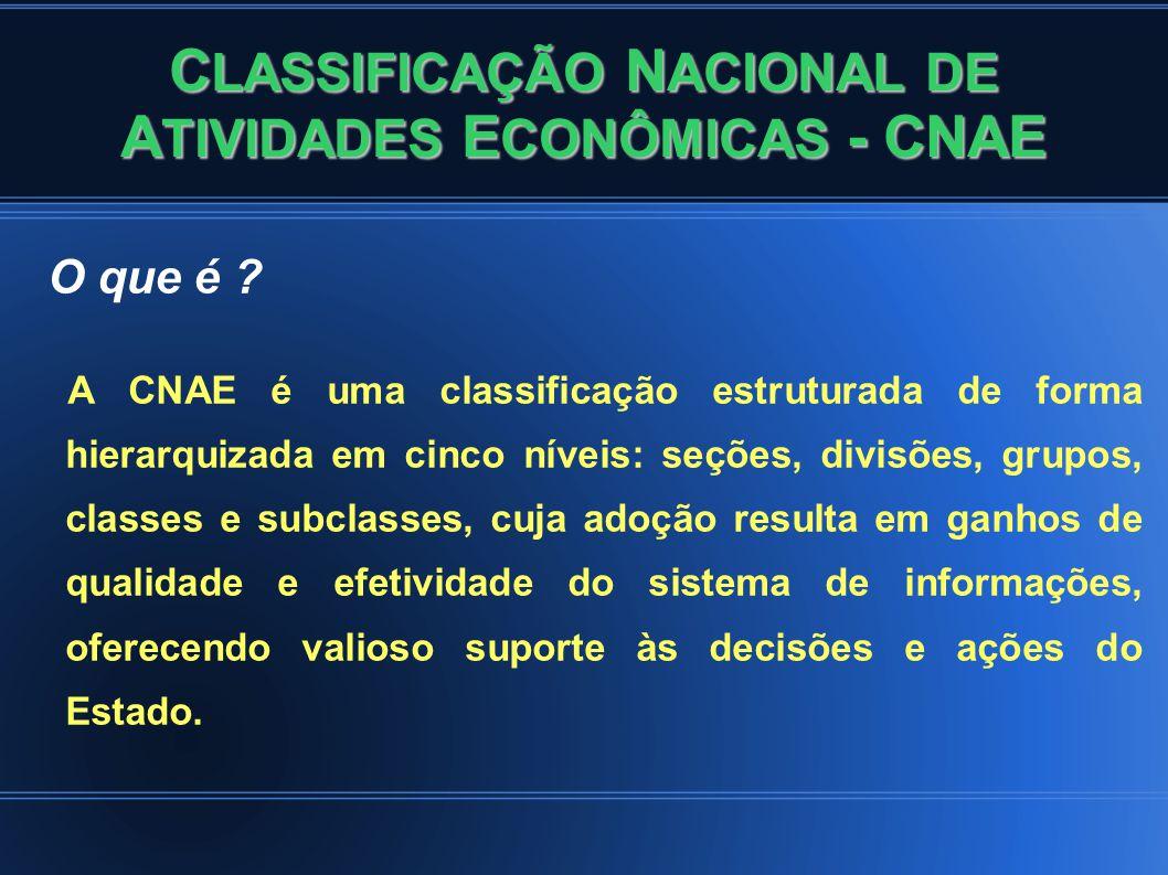 C LASSIFICAÇÃO N ACIONAL DE A TIVIDADES E CONÔMICAS - CNAE O que é .