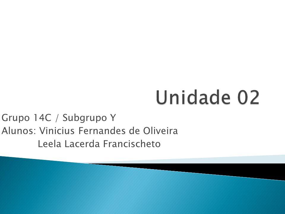 Grupo 14C / Subgrupo Y Alunos: Vinicius Fernandes de Oliveira Leela Lacerda Francischeto