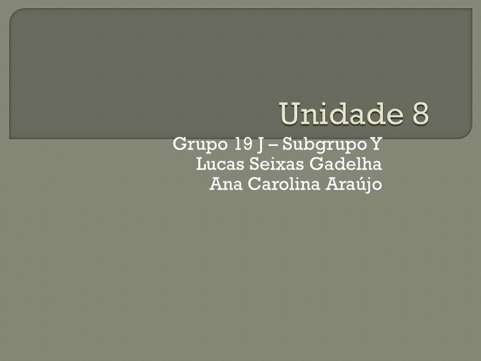 Grupo 19 J – Subgrupo Y Lucas Seixas Gadelha Ana Carolina Araújo