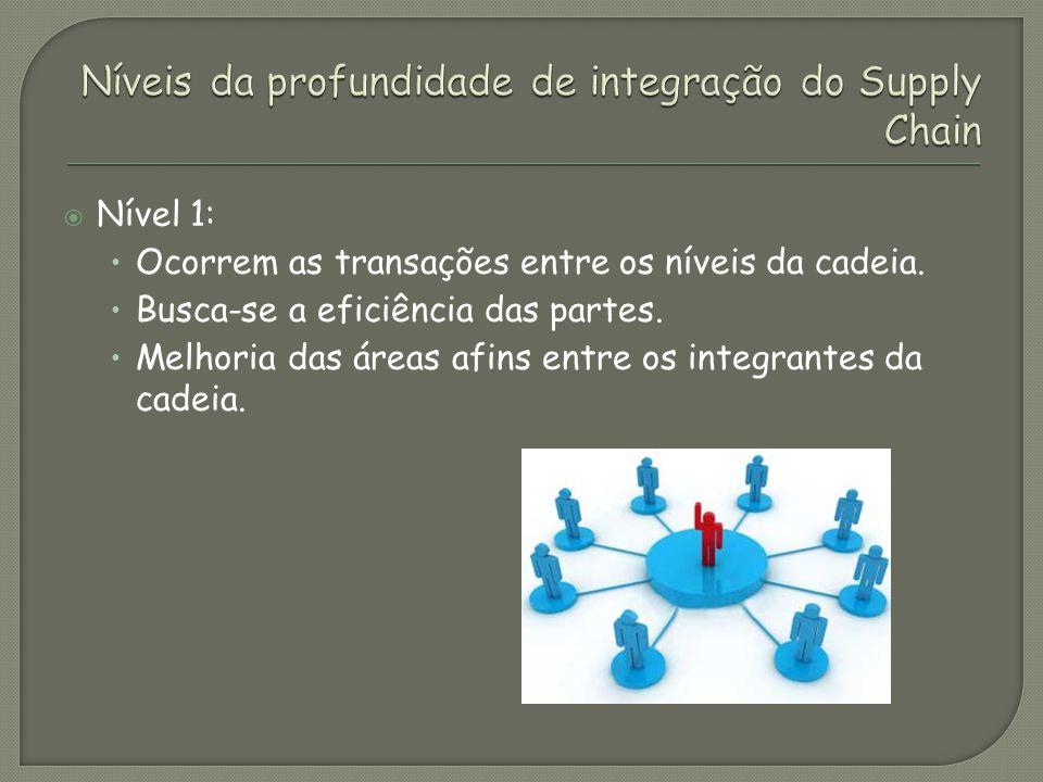 Nível 2: Busca-se a integração dos processos Adaptação dos processos para implementação do supply chain