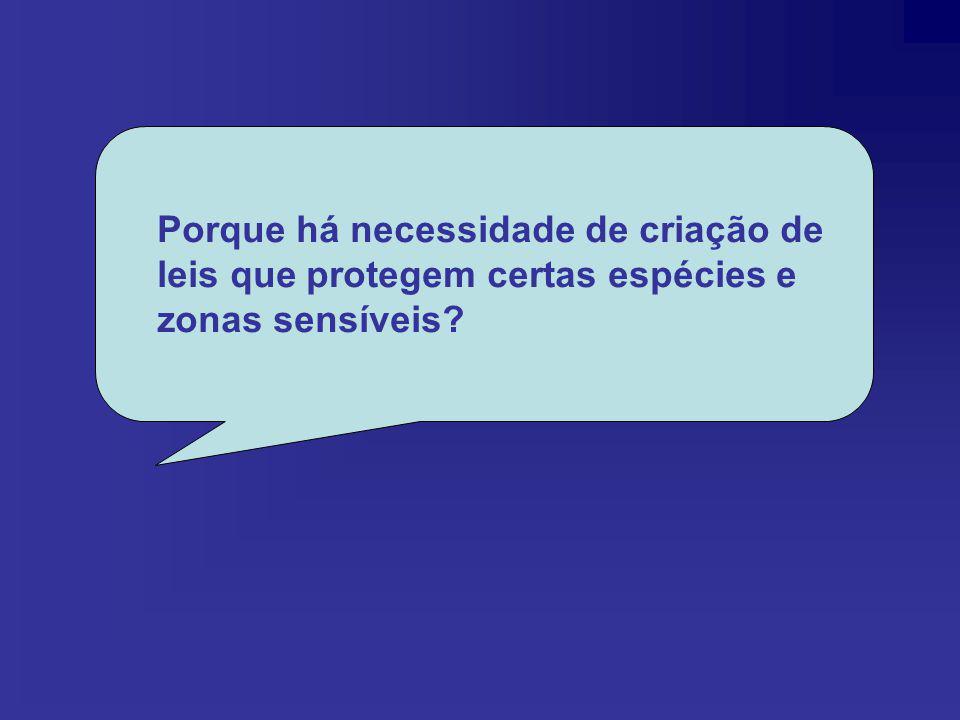 Bibliografias http://www.diramb.gov.pt/data/basedoc/TXT_LI_ 7490_1_0001.htmhttp://www.diramb.gov.pt/data/basedoc/TXT_LI_ 7490_1_0001.htm http://centros.edu.xunta.es/iesaslagoas/slorenf/l obo3333.jpghttp://centros.edu.xunta.es/iesaslagoas/slorenf/l obo3333.jpg http://www.agraria.org/equini/garrano.jpg