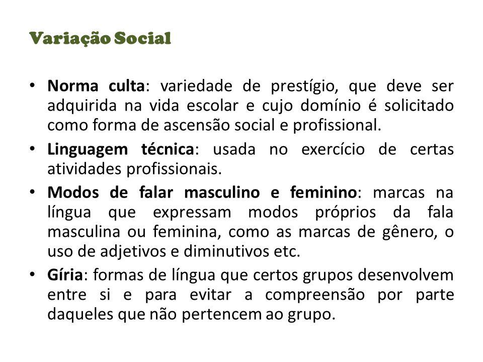 Variação Social Norma culta: variedade de prestígio, que deve ser adquirida na vida escolar e cujo domínio é solicitado como forma de ascensão social e profissional.