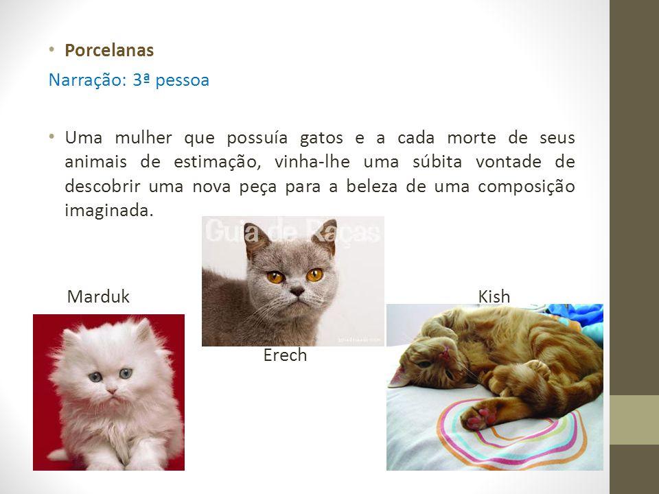 Porcelanas Narração: 3ª pessoa Uma mulher que possuía gatos e a cada morte de seus animais de estimação, vinha-lhe uma súbita vontade de descobrir uma