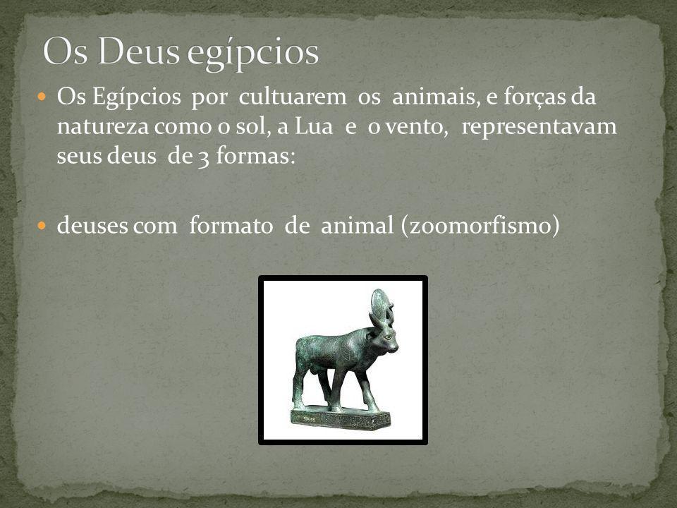 Os Egípcios por cultuarem os animais, e forças da natureza como o sol, a Lua e o vento, representavam seus deus de 3 formas: deuses com formato de animal (zoomorfismo)
