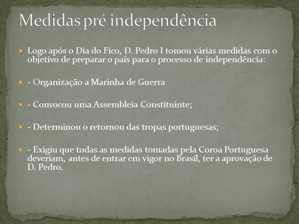 Logo após o Dia do Fico, D. Pedro I tomou várias medidas com o objetivo de preparar o país para o processo de independência: - Organização a Marinha d